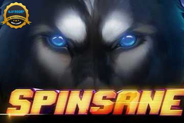 Spinsane Slot Review