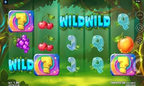 wonder woods slot screen - Wonder Woods Slot Review