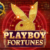 Playboy Fortunes Slot Game