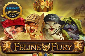 Feline Fury Slot Review