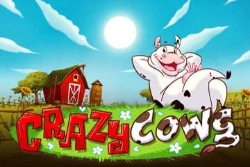 Crazy Cows Slot Review