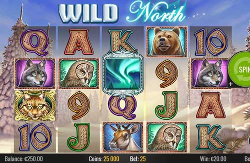 wild north slot screen - Wild North Slot Review
